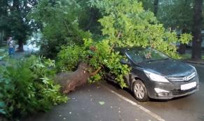 В результате непогоды в Екатеринбурге пострадало 4 автомобиля
